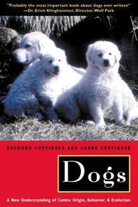 [해외]Dogs