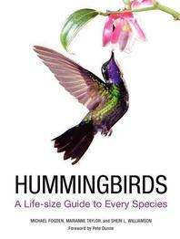 [해외]Hummingbirds
