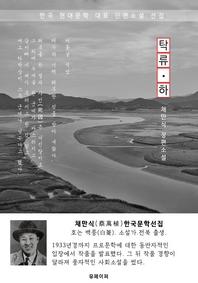 탁류(濁流) 하권 - 채만식 한국문학선집(장편소설)