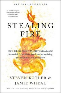 [해외]Stealing Fire (Hardcover)