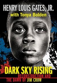 [해외]Dark Sky Rising (Paperback)