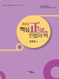 정지문 민법의 맥(2020)(핵심)