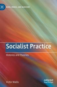 [해외]Socialist Practice (Hardcover)