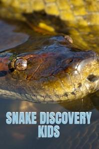 [해외]Snake Discovery Kids