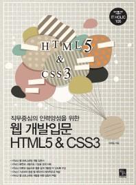 웹개발입문 HTML5&CSS3(직무중심의 인력양성을 위한)(IT Holic 105)