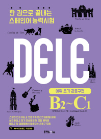 한 권으로 끝내는 스페인어 능력시험(DELE B2-C1): 어휘 쓰기 관용구 편