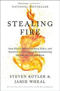 [해외]Stealing Fire