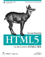 HTML5 활용(구글 개발자가 들려주는)(에이콘 웹 프로페셔널 시리즈 29)