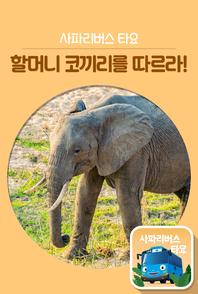사파리버스 타요 할머니 코끼리를 따르라!(e오디오북)