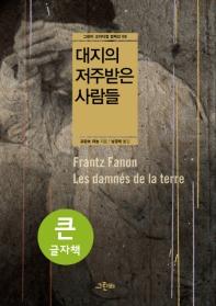 대지의 저주받은 사람들(큰글자책)(크리티컬 컬렉션 6)