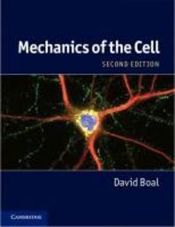 Mechanics of the C
