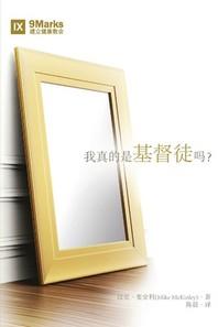 [해외]我真的是基督徒吗?(Am I Really a Christian?) (Chinese) (Paperback)