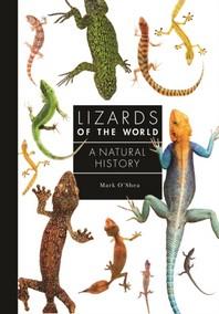 [해외]Lizards of the World