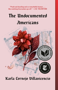 [해외]The Undocumented Americans