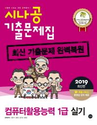 컴퓨터활용능력 1급 실기 기출문제집(2019)(시나공)