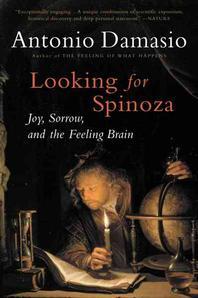 [해외]Looking for Spinoza