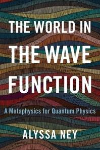 [해외]The World in the Wave Function