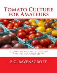Tomato Culture for Amateurs