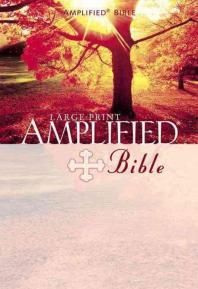 Large Print Bible-AM