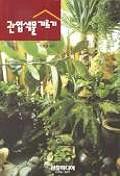 관엽식물 기르기