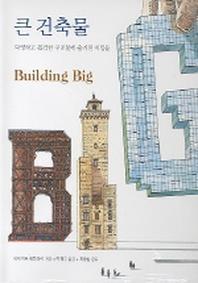 큰 건축물(데이비드맥컬레이 건축시리즈 5)