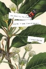 [해외]The Wood for the Trees (Hardcover)