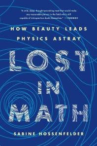 [해외]Lost in Math