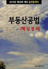 2019년 제30회 대비 공인중개사 부동산공법 (핵심정리)
