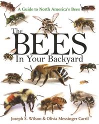 [해외]The Bees in Your Backyard