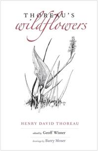 [해외]Thoreau's Wildflowers (Hardcover)