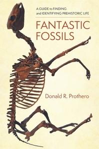 [해외]Fantastic Fossils