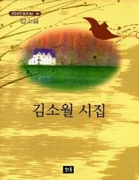 김소월 시집(STEADY BOOKS 38)
