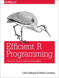 [해외]Efficient R Programming (Paperback)