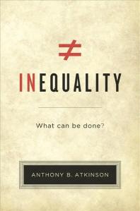 [해외]Inequality (Paperback)