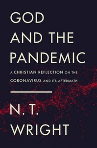 [해외]God and the Pandemic (Paperback)