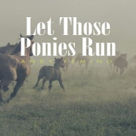 [해외]Let Those Ponies Run (Paperback)