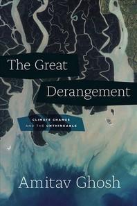 [해외]The Great Derangement