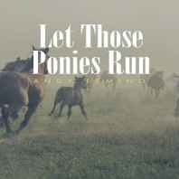 [해외]Let Those Ponies Run (Hardcover)