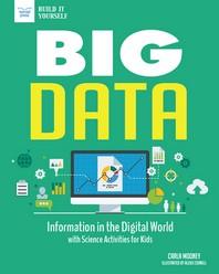 [해외]Big Data (Paperback)