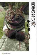 [해외]兩手のない猫,チビタ