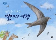 바람을 가르는 칼새의 여행(옹달샘 생태과학동화 2)(양장본 HardCover)