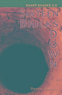 Sixteen Bricks Down