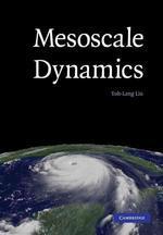 Mesoscale Dynamics (Paperback)