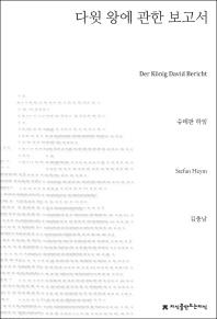 다윗 왕에 관한 보고서(지식을만드는지식 소설선집)(지식을만드는지식 소설선집)