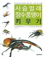 사슴벌레 장수풍뎅이 키우기