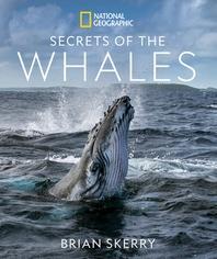 [해외]Secrets of the Whales