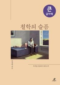 철학의 슬픔(큰글자책)