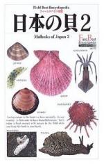 日本の貝 2