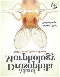 [해외]Atlas of Drosophila Morphology
