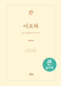 아포하(큰글자책)(철학의 정원 35)